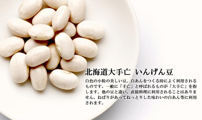 北海道大手亡 白いんげん豆